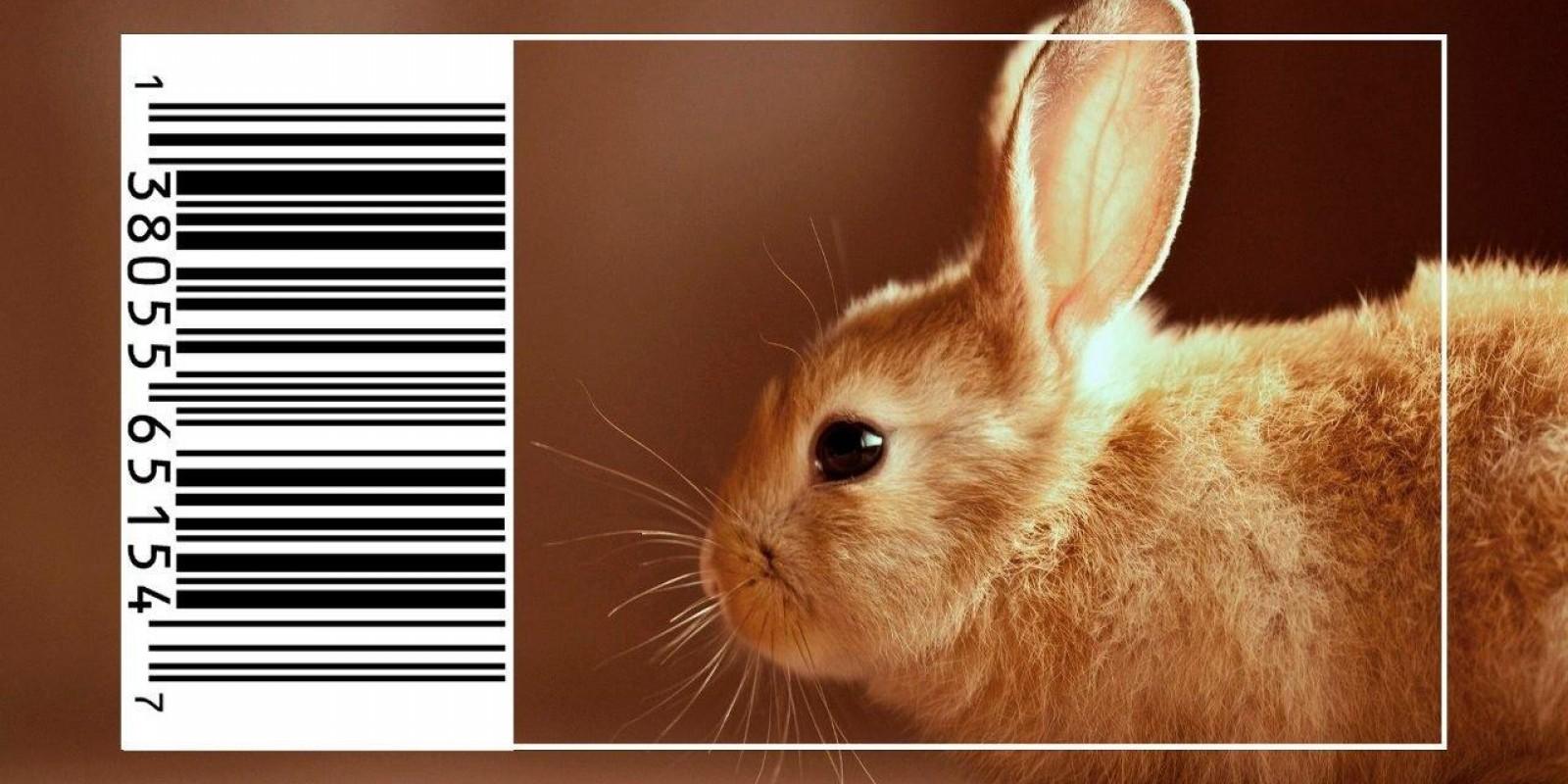 Fim Dos Testes De Cosméticos Em Animais: Natura E The Body Shop Juntas Na Causa