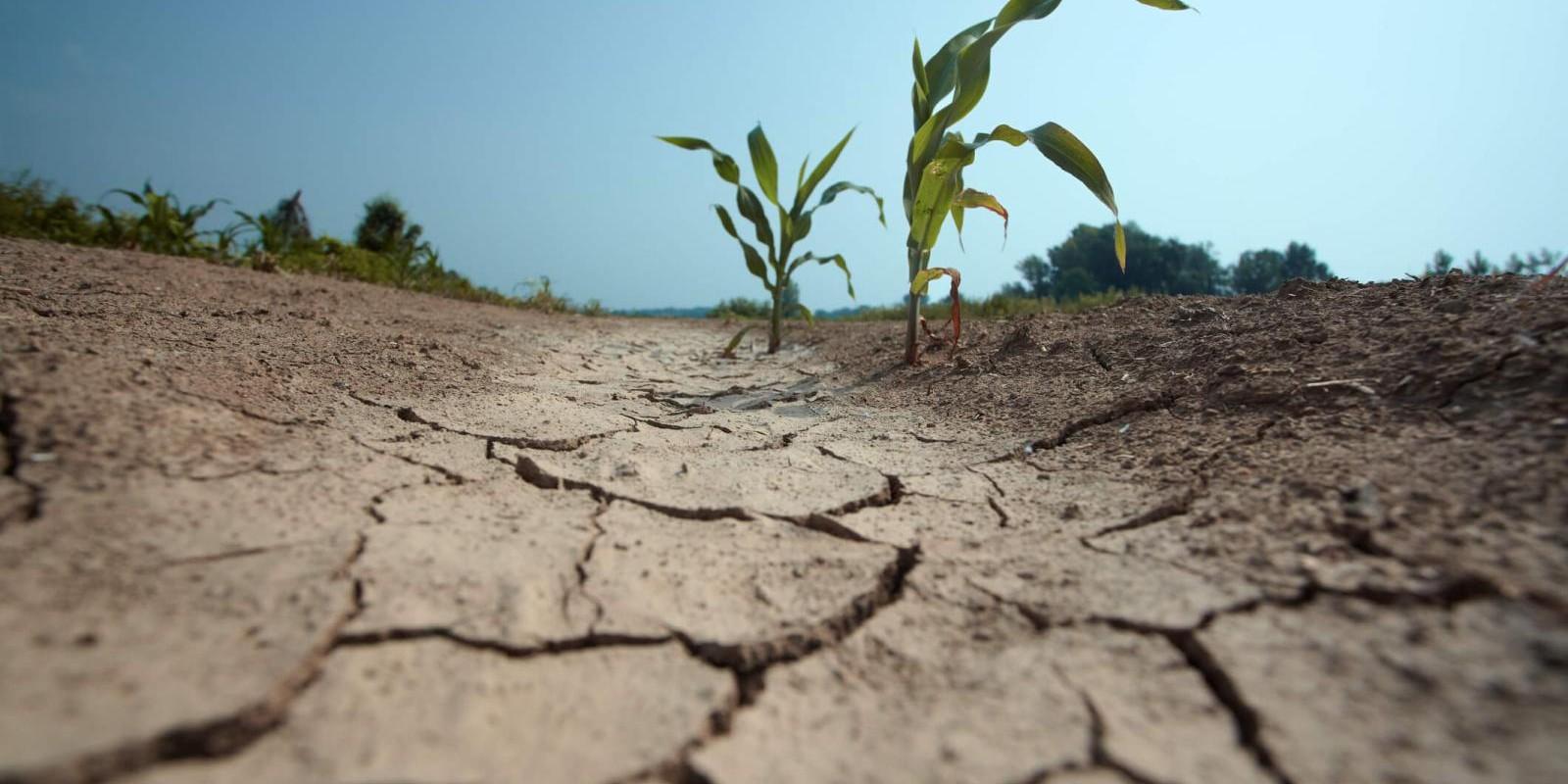 Crise de água no Brasil